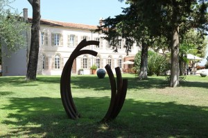 olive-grove-11-1024x683